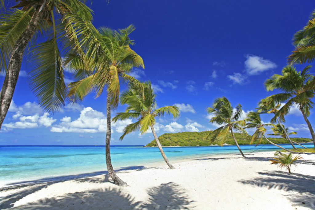 The islands in the Grenadines are famous for their secluded white sand beaches.