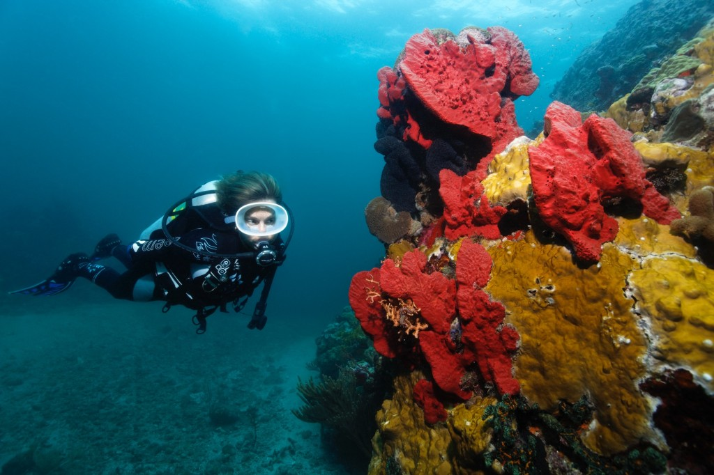 ©Elegant Resorts - Scuba Diving in St. Lucia